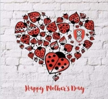 Love Bugs Mother Card